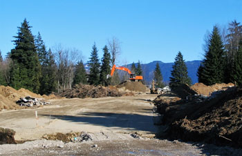Land Clearing Mission BC